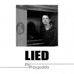 pitprzygodda_lied