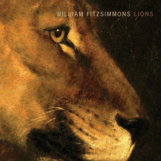 lions_cover