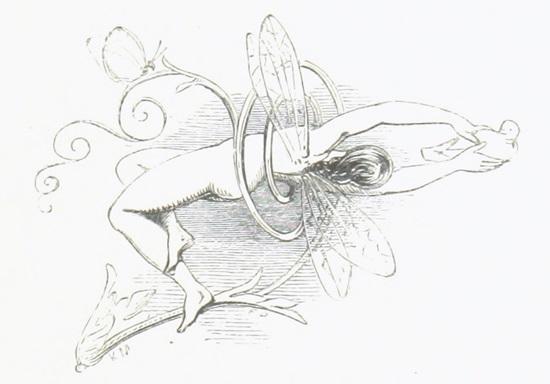 Sommernachtstraum Elfe mit Taube